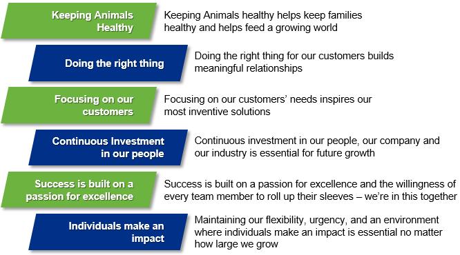Corp-Beliefs